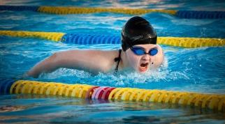 swimming-1265932_1280.jpg